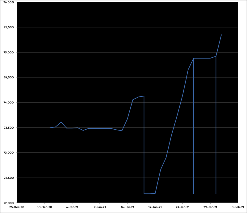 Graph of progress on the novel for January 2021.